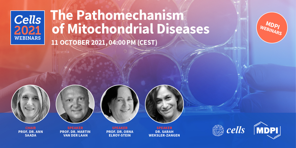 The Pathomechanism of Mitochondrial Diseases